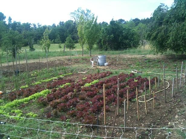 Introduction à la création d'un projet agricole.